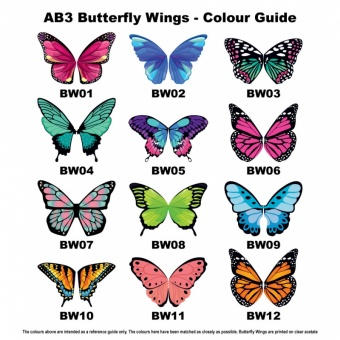 ab3-butterfly-wing-colour-guide